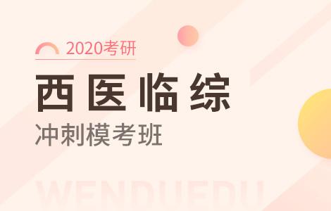 【文都网校】2020考研(西医临综)冲刺模考班