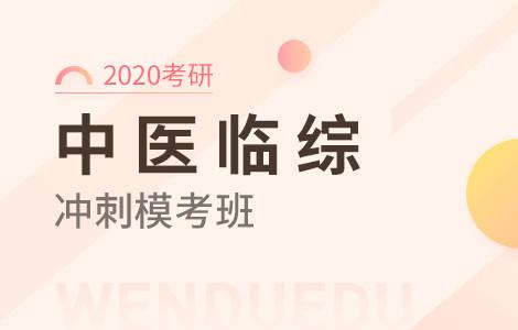 【文都网校】2020考研(中医临综)冲刺模考班