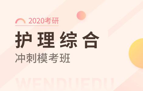 【文都网校】2020考研(护理综合)冲刺模考班