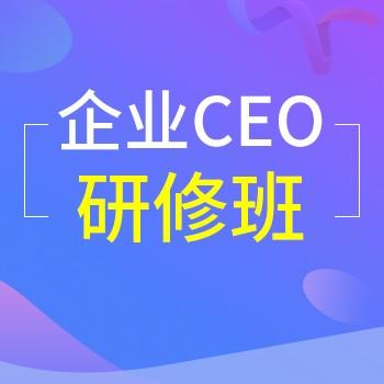 [北丰商学院]企业CEO研修班